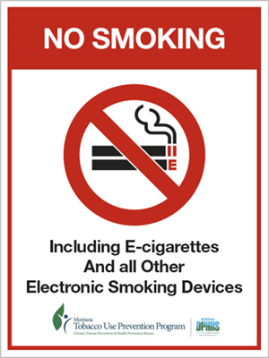 "6""x8"" No E-Smoking Front Mount Business Cling"