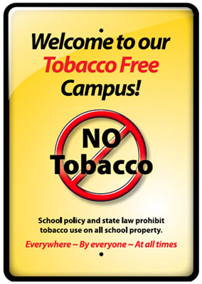 "5""x8"" Tobacco Free Front Mount Schools Cling"